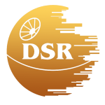 DSR-Bot